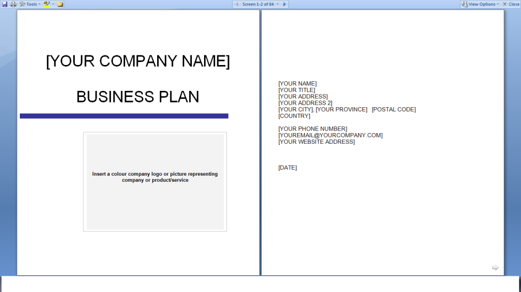 Business Plan Template Free Download Printable Schedule