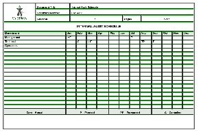 Schedule Audit Report Template Excel