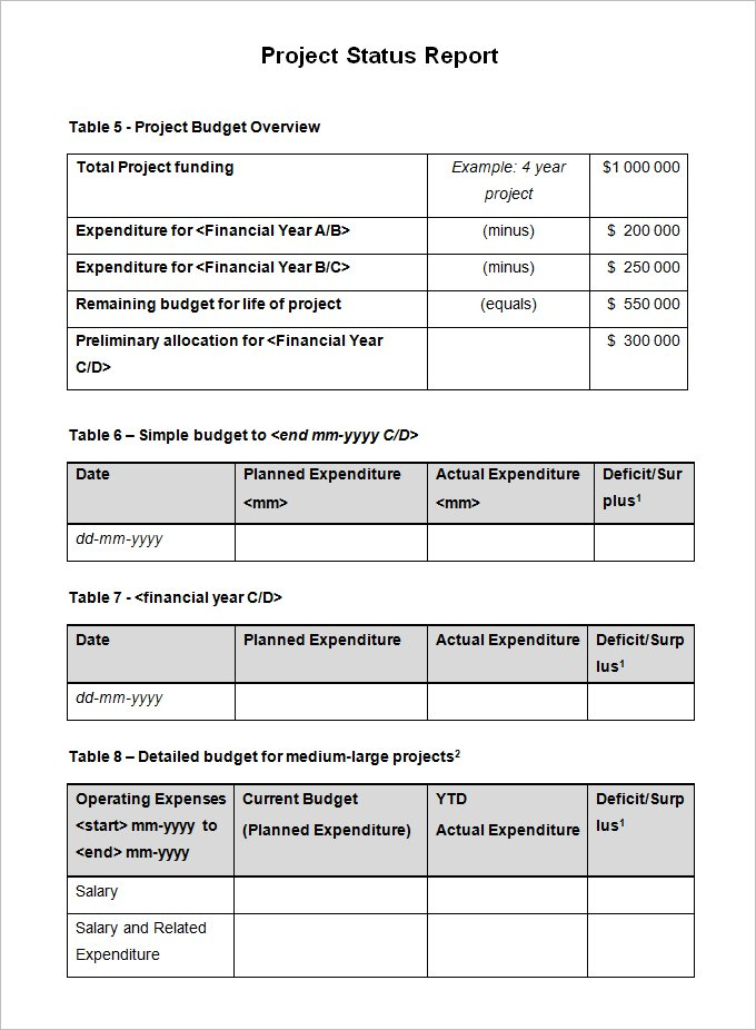Project Report Template Doc