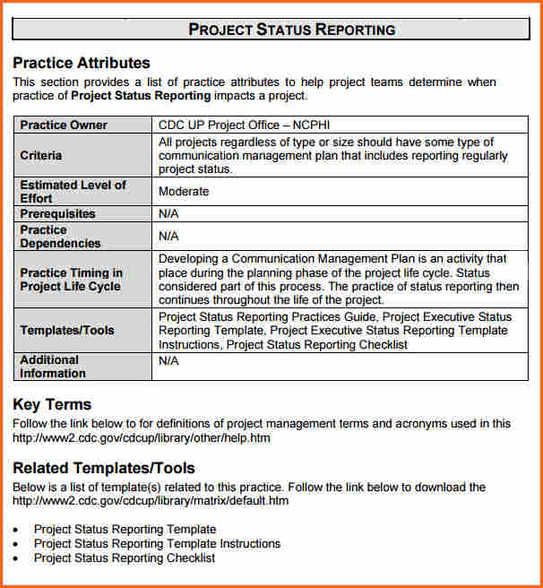 8+ weekly status report template doc Budget Template Letter