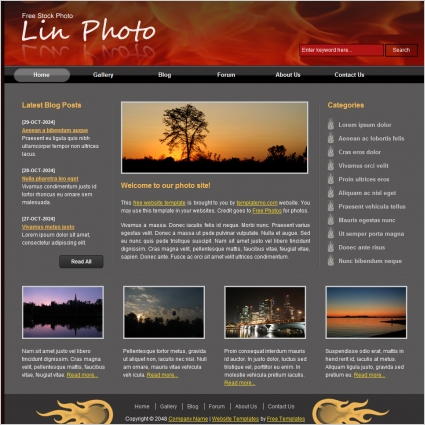 Template Free Download Html